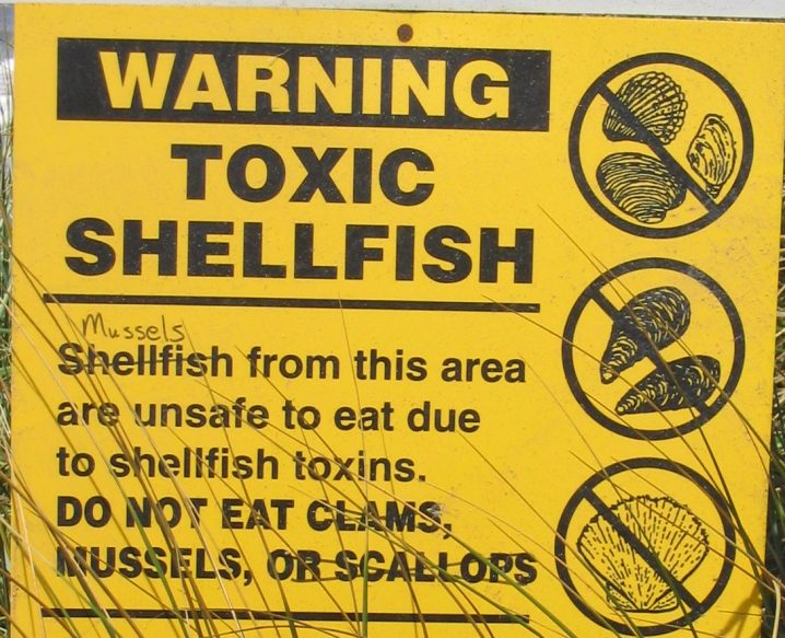 Yellow sign warning against eating shellfish poisoned by red tide