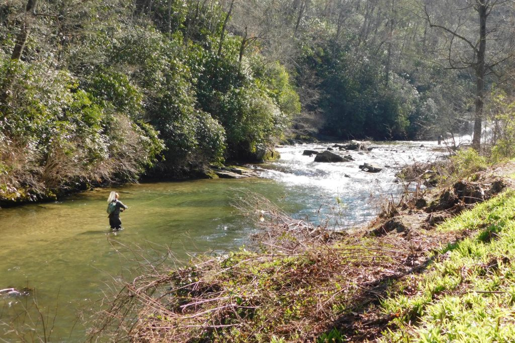 A fly fisherman wading in a river in North Carolina