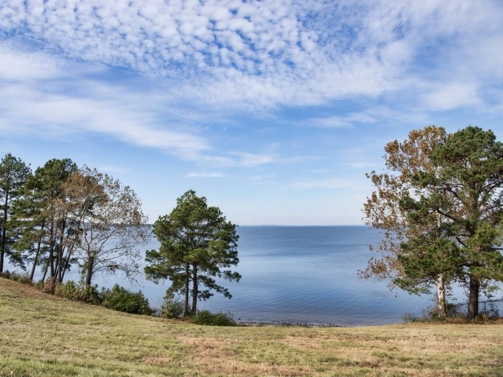 A view of the Toledo Bend Lake from the shore