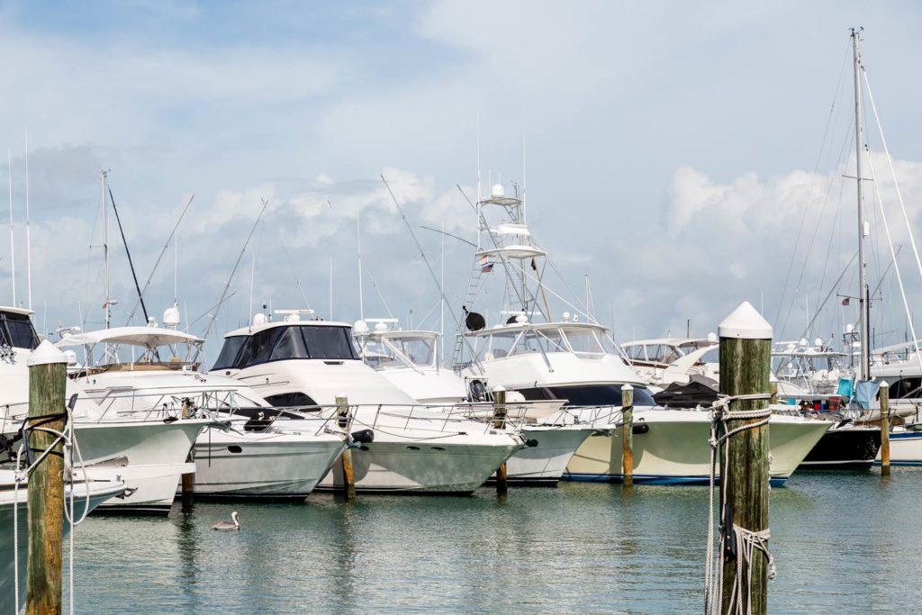 Fishing charters docked at a marina in Tampa, Florida
