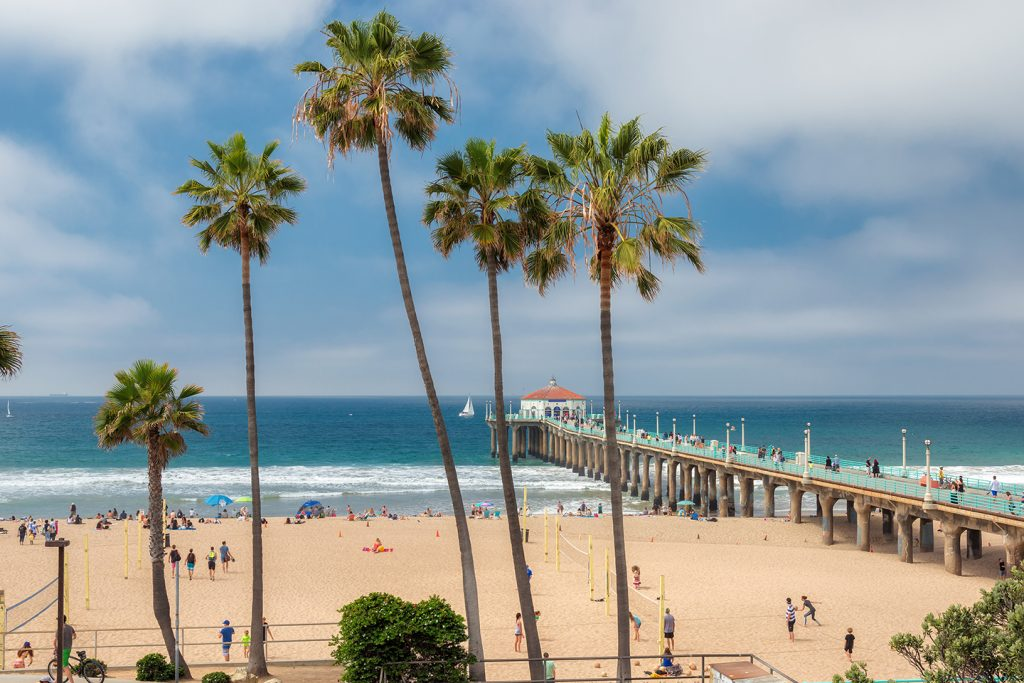 A view of the coastline in Huntington Beach, California, with palm trees in the foreground and the fishing pier stretching into the sea