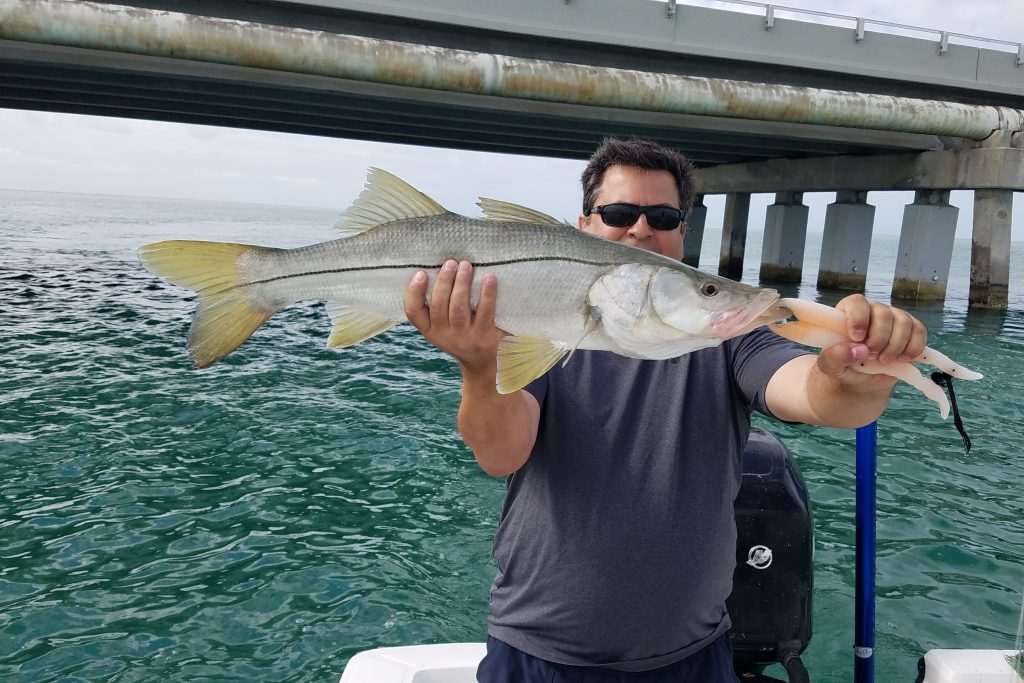 An angler holding a Snook near a bridge in the Florida Keys