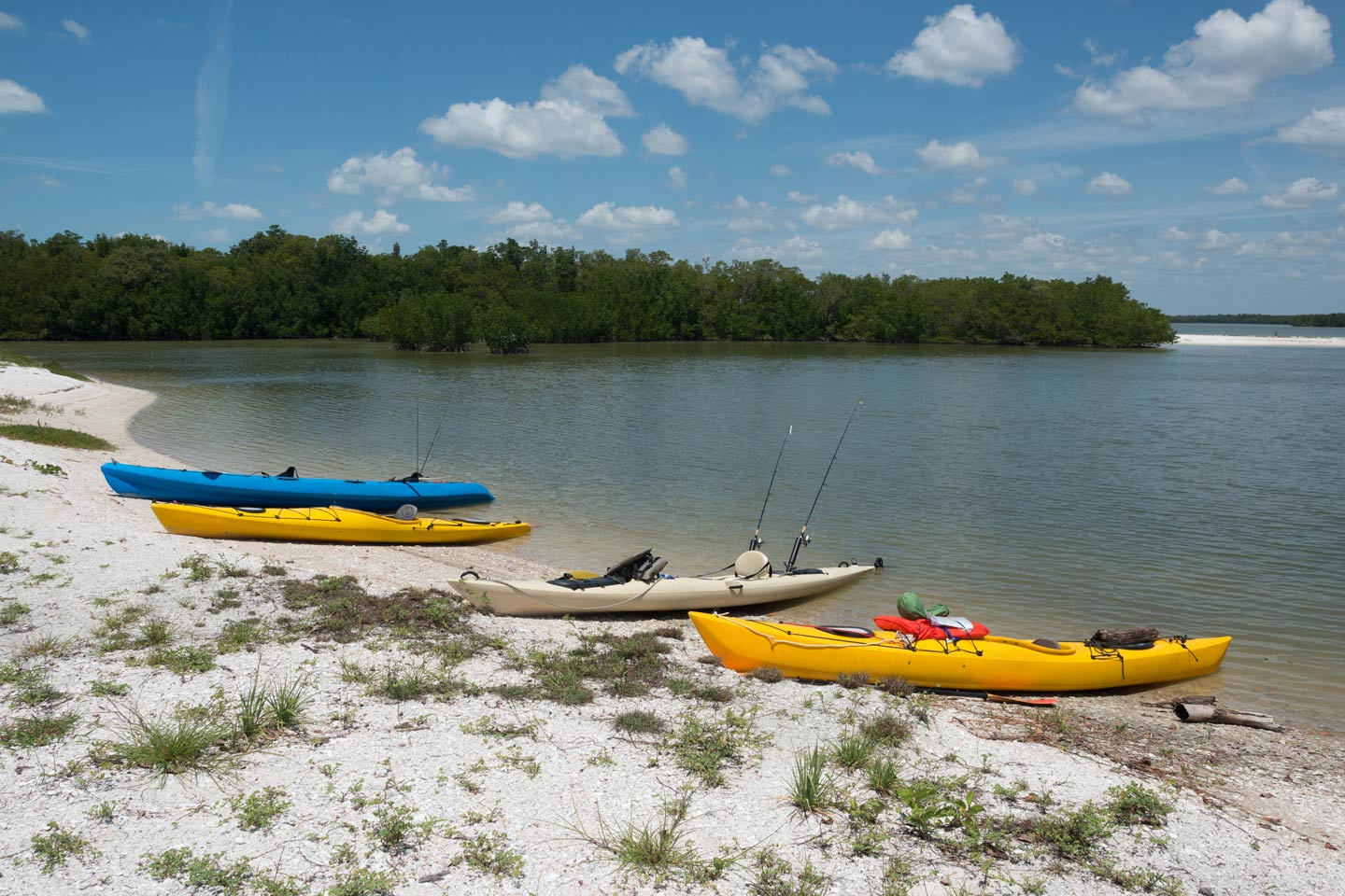 Three kayaks line the shore of the Ten Thousand Islands