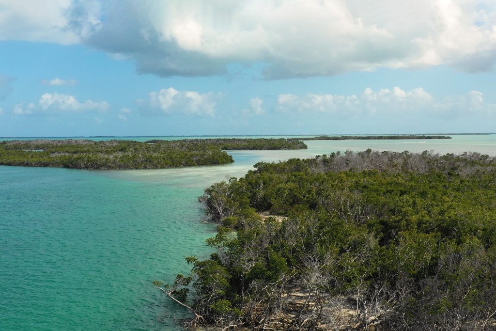 An aerial view of the flats and mangroves around Key West