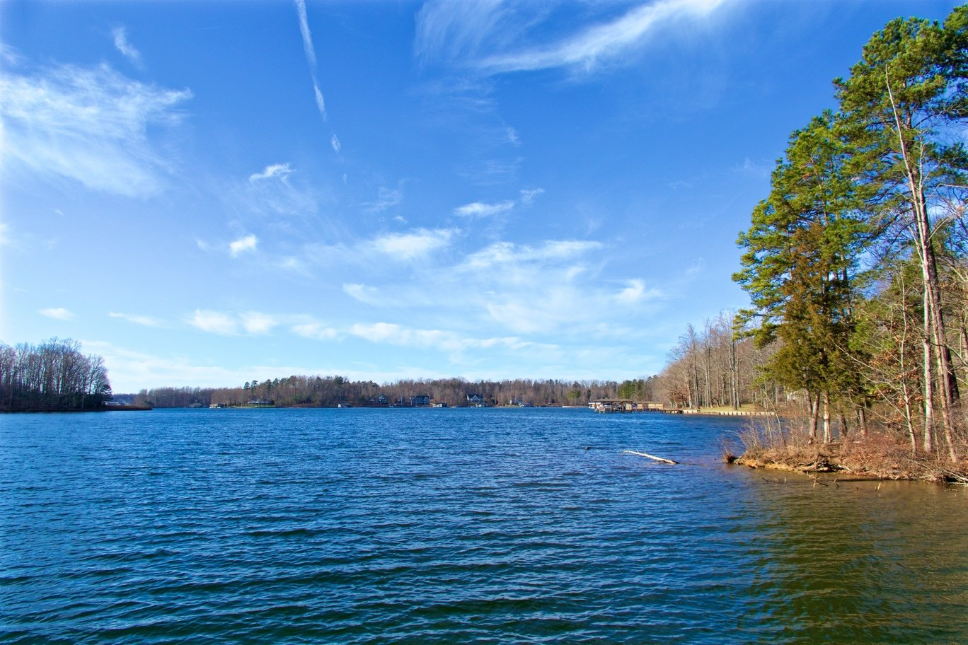 A view over the water of one of Virginia's top fishing spots, Lake Anna