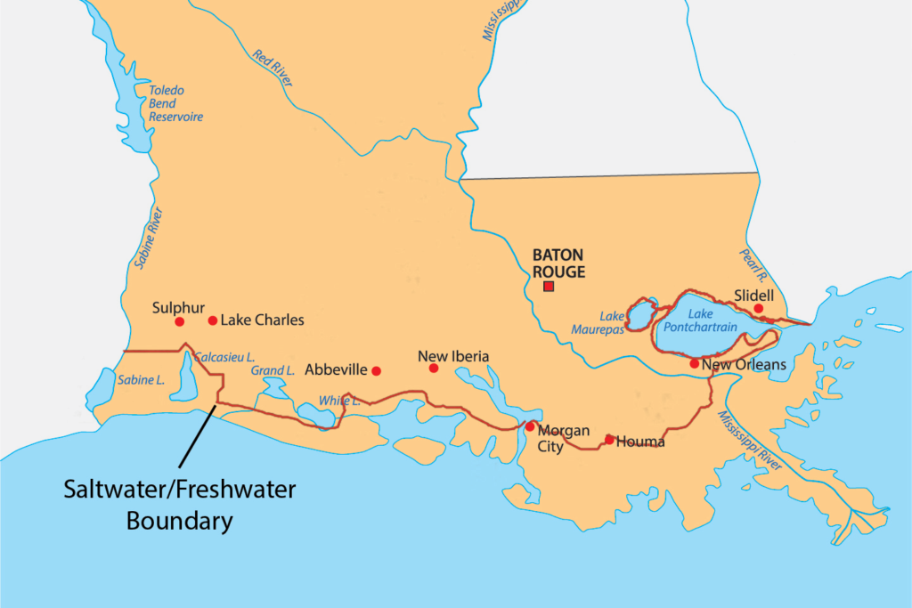 Louisiana Fishing License Rules Explained