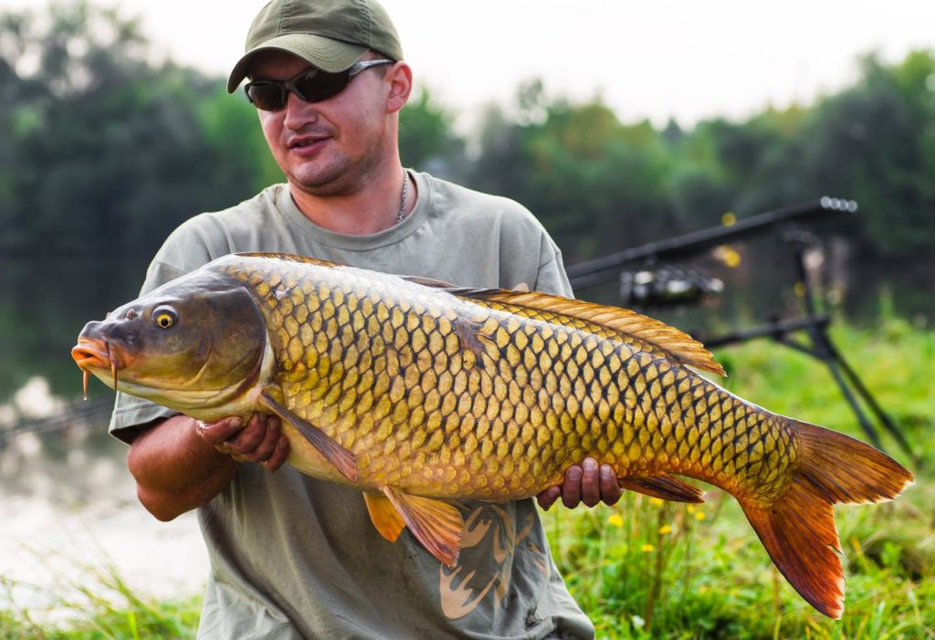 A man holds a Carp with fishing gear and the river behind him