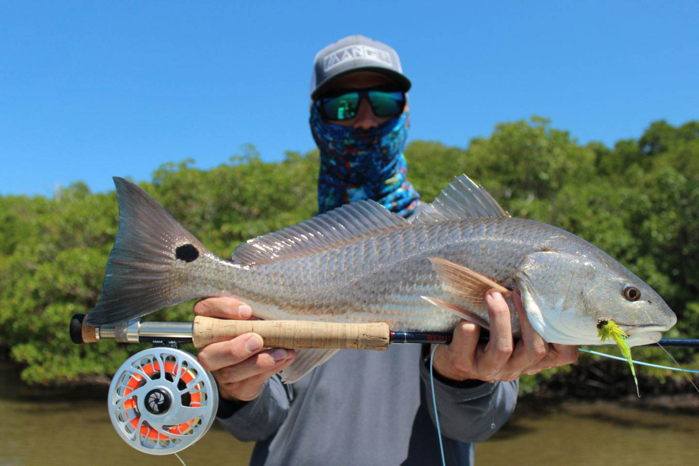 A man holds a Redfish up to the camera with Marco Island's mangrove waters behind him