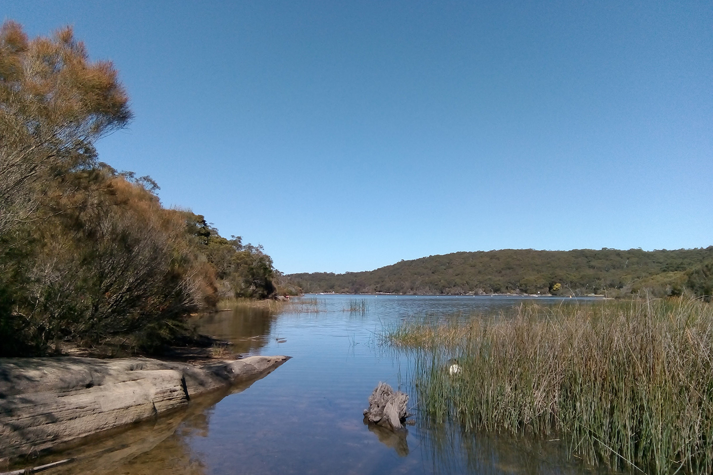 A shallow area of Manly Dam in northern Sydney