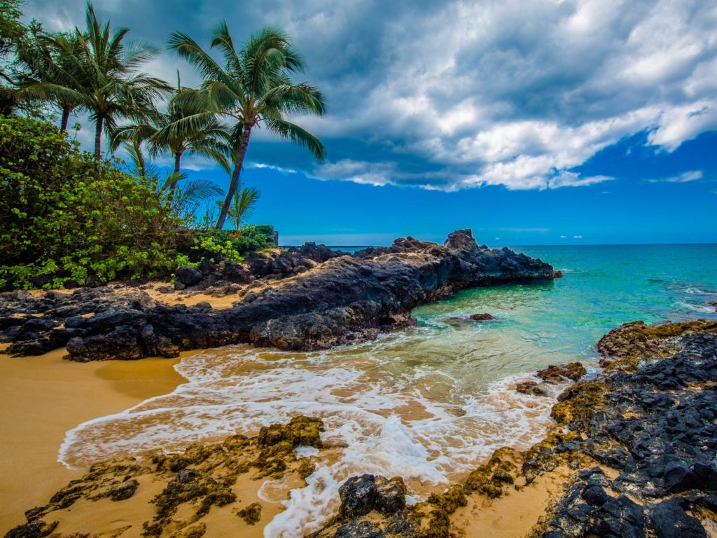 A view of a beach in Maui with a rocky shoreline, palm trees, and the ocean