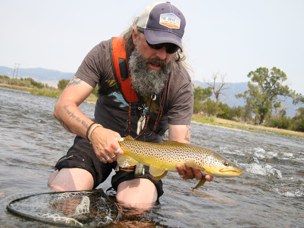 A bearded angler kneeling in a river to release a Brown Trout