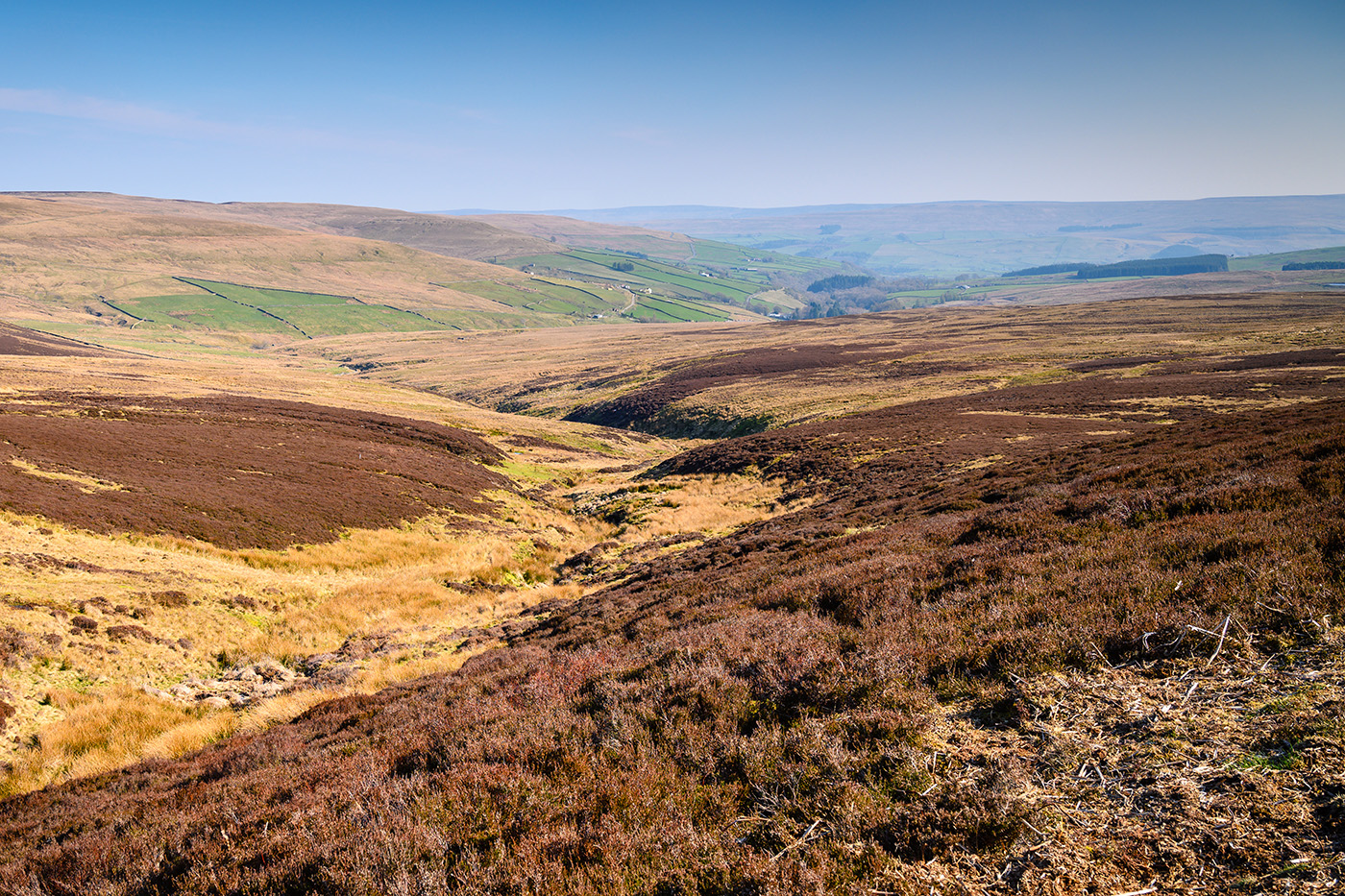 Moorland in the North Pennines