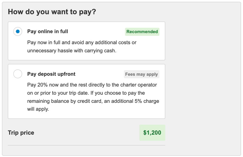 What online payment looks like in the checkout process