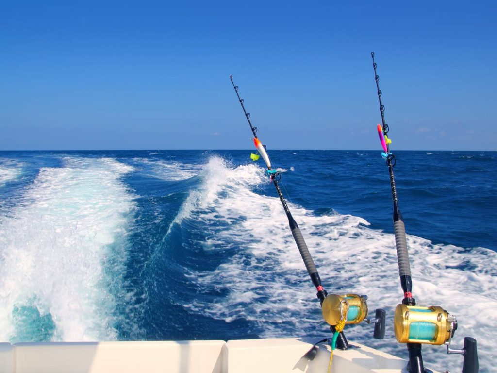 Trolling with two lines in the offshore waters