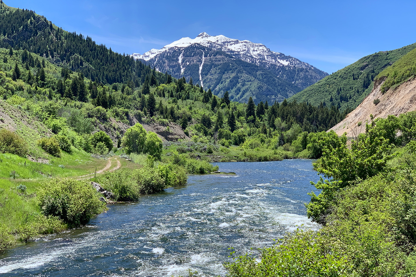 The Middle Provo River in Northern Utah, with mountains in the distance