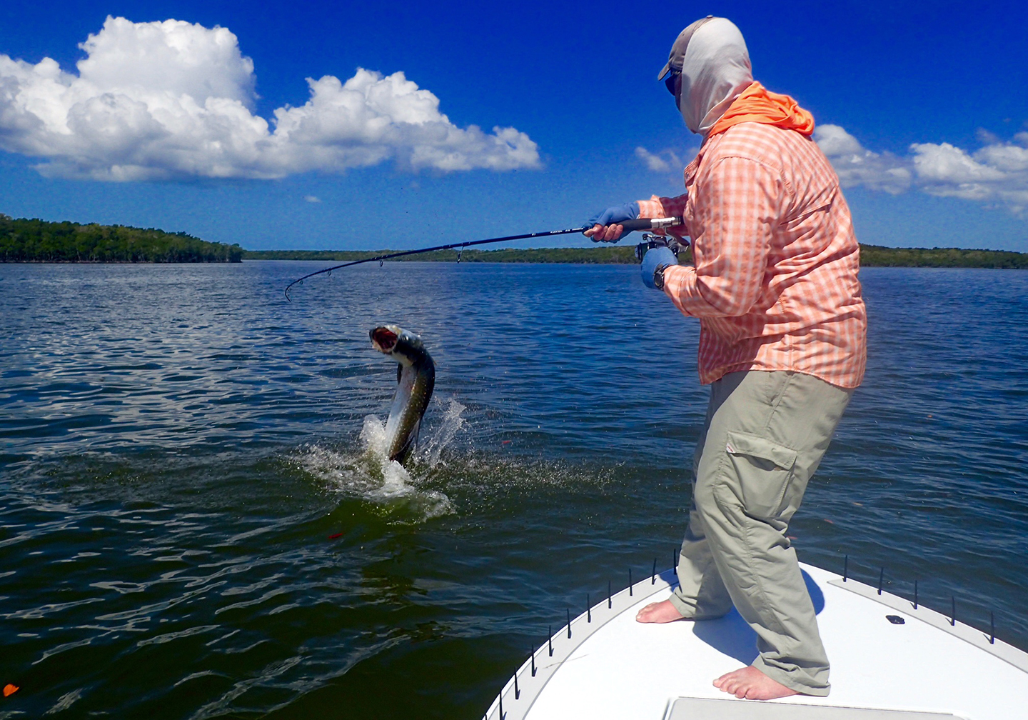 A recreational angler at the front of a boat fighting a Tarpon fish which is jumping out of the water