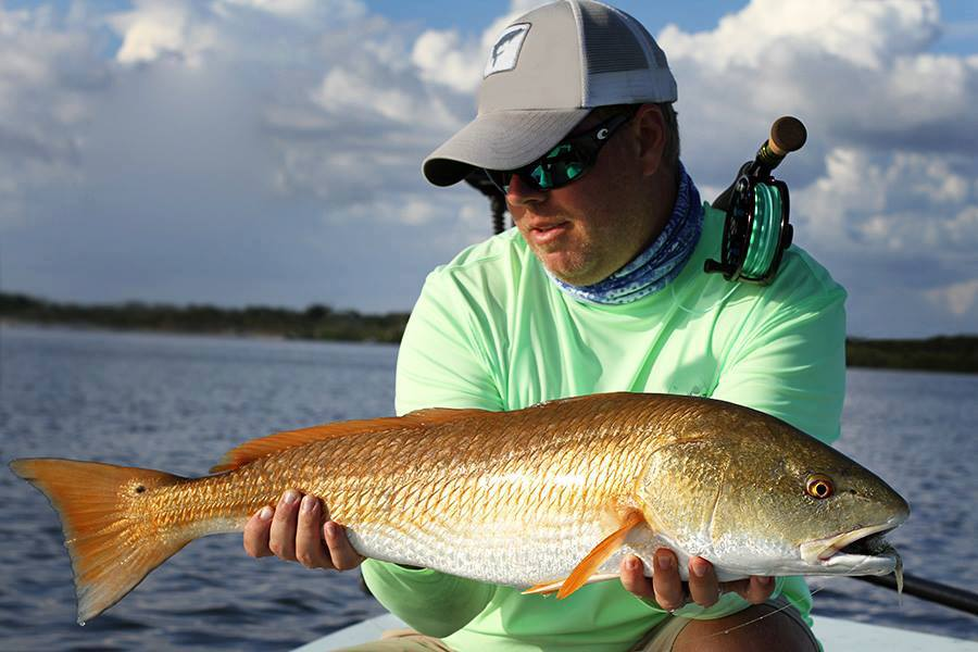 A fisherman holding a nice Redfish and looking admiringly at his catch