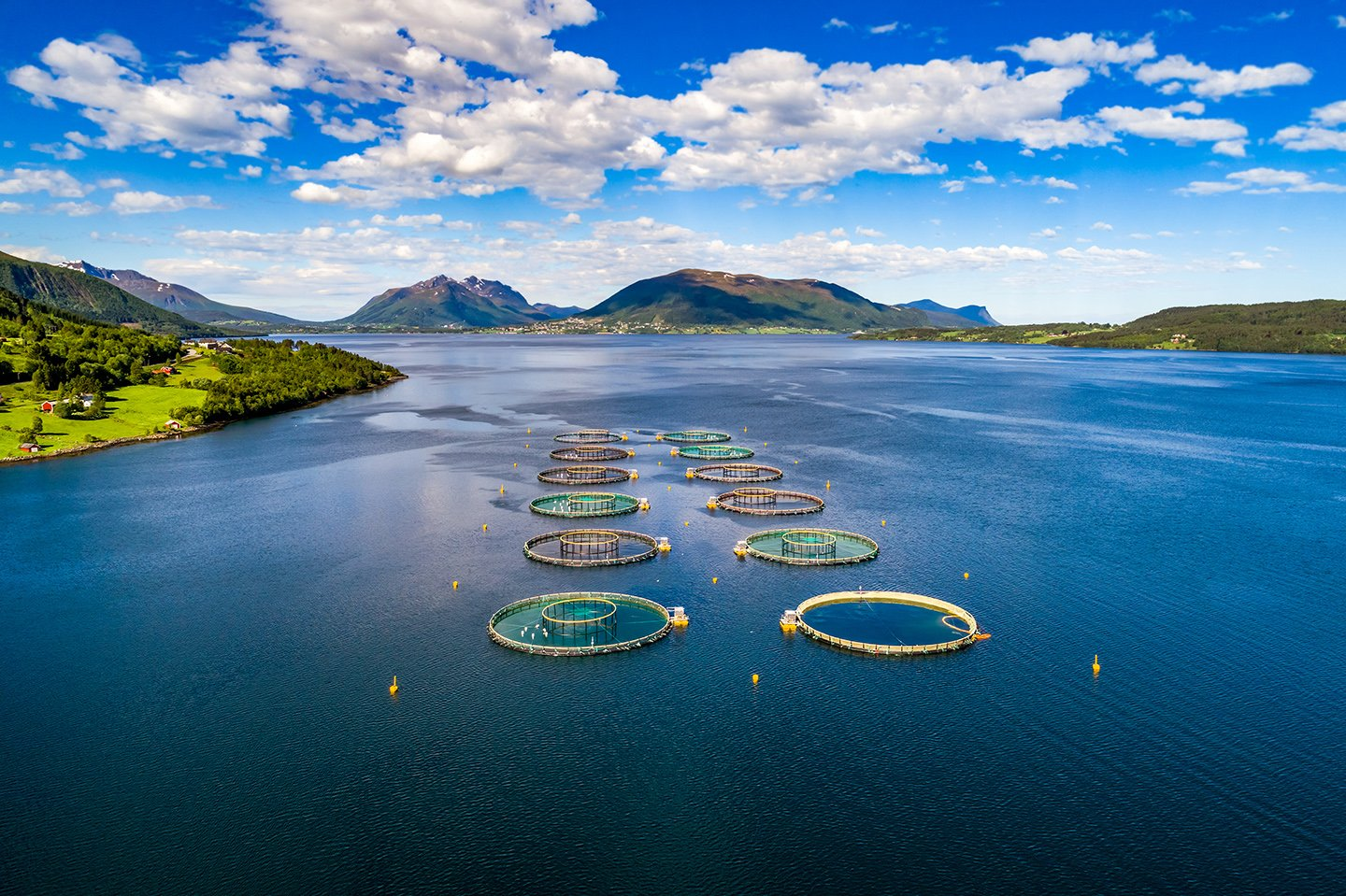 An aerial view of an open-water Salmon farm in Norway
