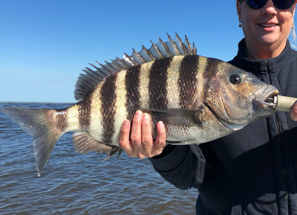 Man holding a Sheepshead on a boat on a sunny day.