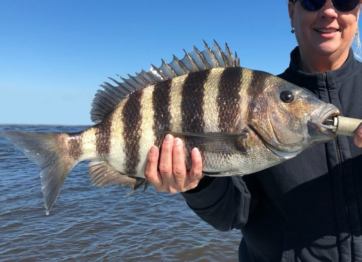 Man holding a Sheepshead on a boat on a sunny day
