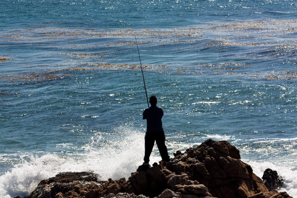 A man fishing from shore in Dana Point. He is standing on a rocky outcrop and casting towards a kelp bed near the shoreline