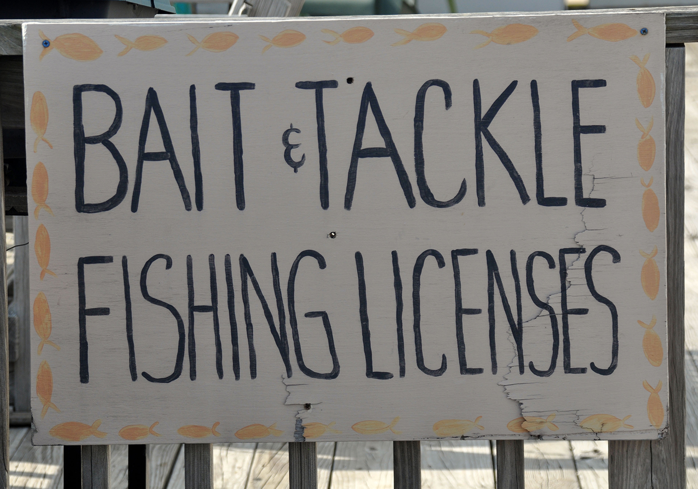 "A hand-painted sign reading ""bait & tackle, fishing licenses"""