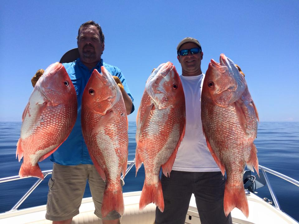 two anglers holding two snapper fish each on a fishing boat