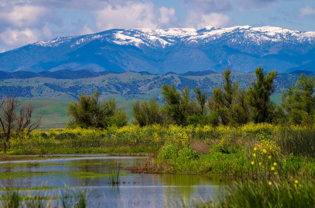 lake near sacramento with snowy mountains in the background