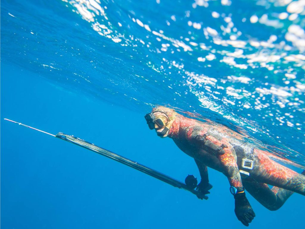 A spearfisher rests underwater wearing spearfishing gear and holding a speargun