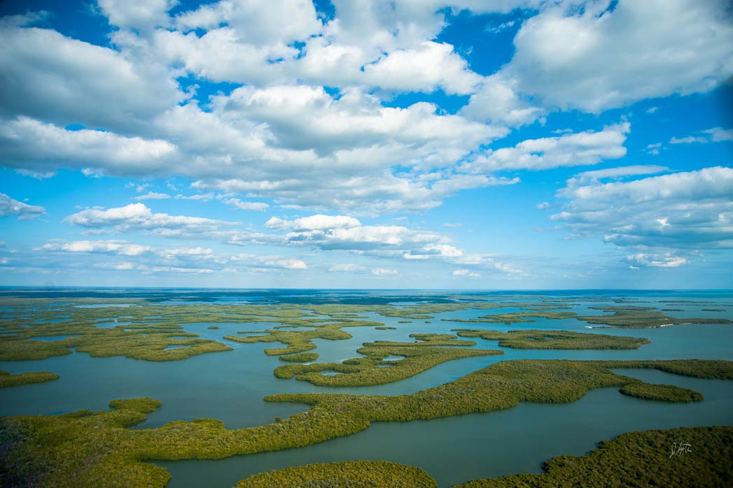 An aerial view of the Ten Thousand Islands on a sunny day
