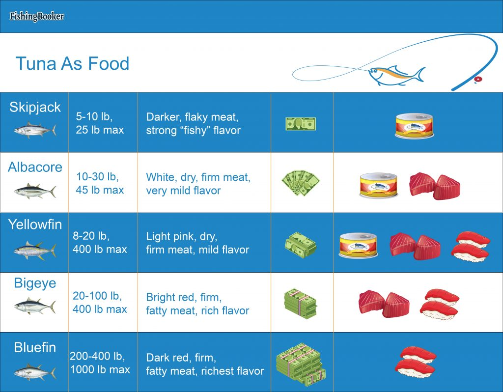 A table showing the size, characteristics, and cost of various types of tuna