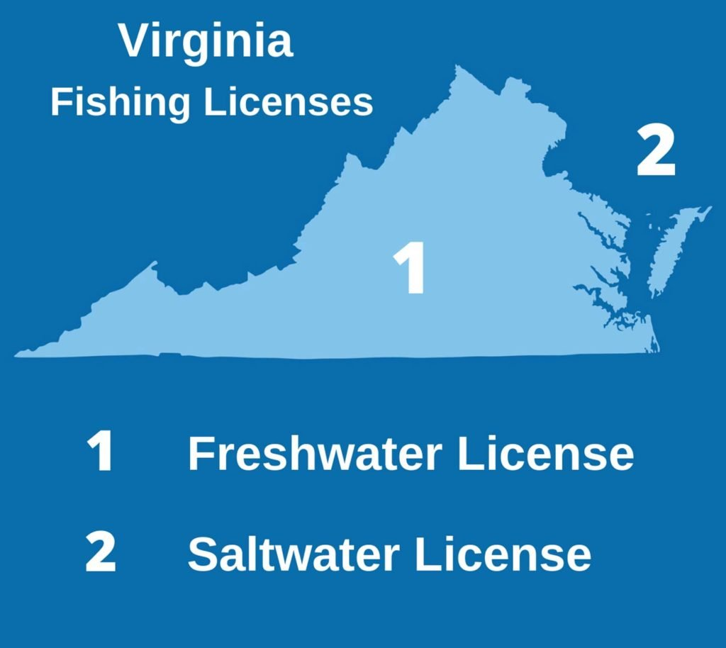 An infographic showing the distribution of freshwater and saltwater fishing licenses in the state of Virginia