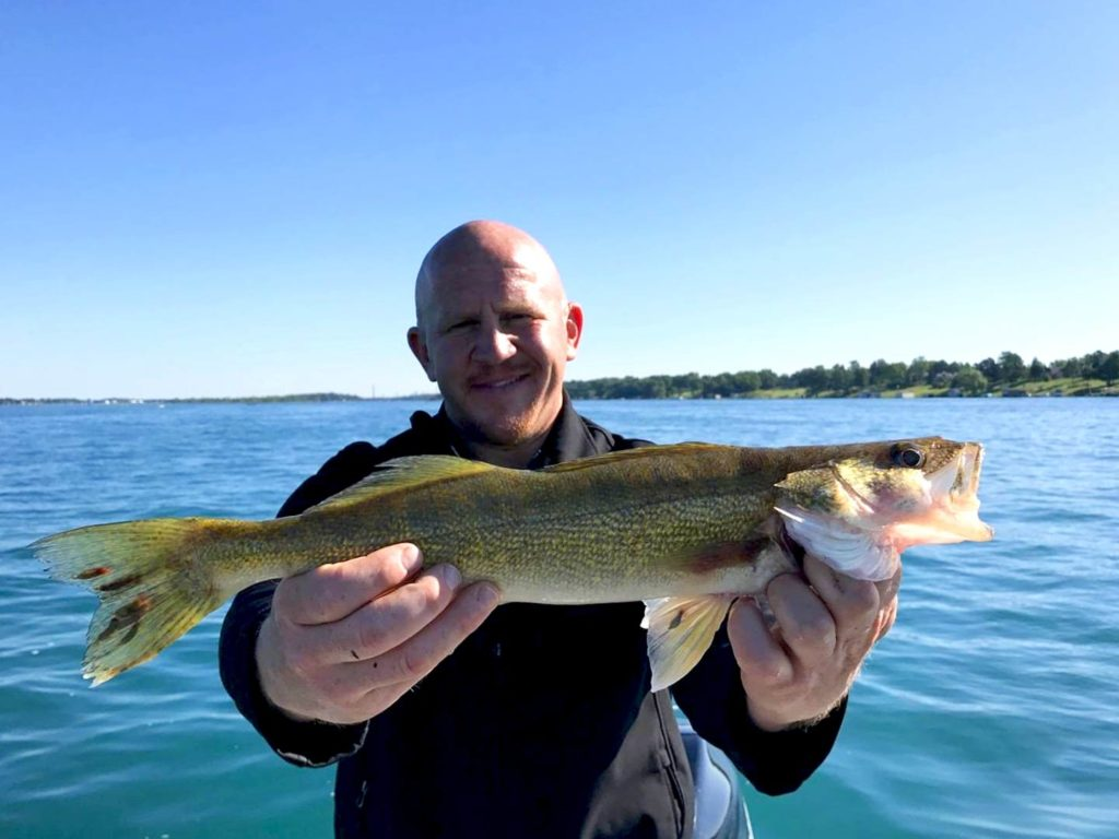 An angler holding a Walleye on Lake St. Clair
