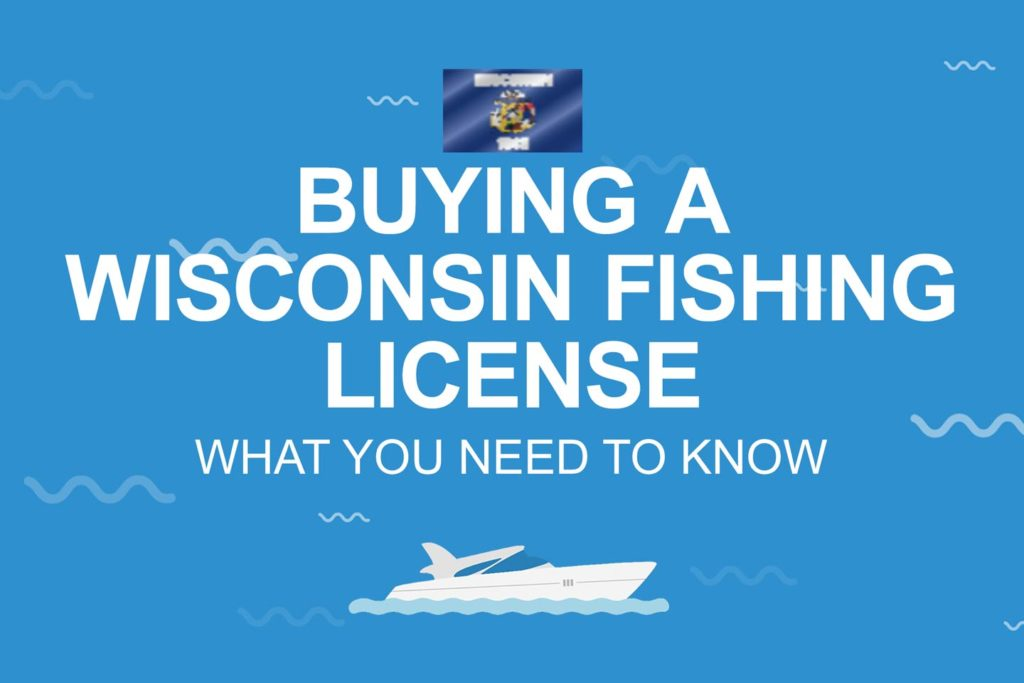 Standardized Wisconsin license infographic