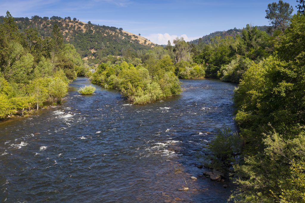 the american river with green trees