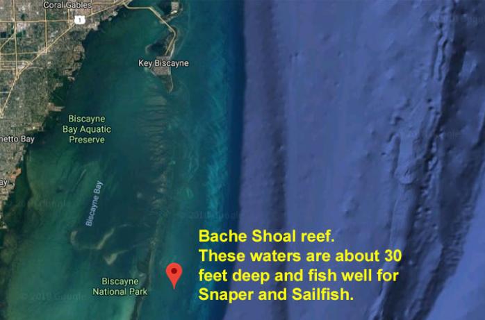 Miami fishing spots: Bache Shoal reef