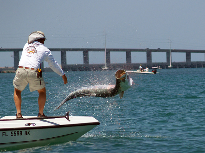 The best fishing spots in the keys and how to fish them for Islamorada tarpon fishing
