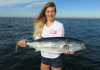 A smiling woman in shorts and a white sweater holding a large False Albacore with a fishing fly in its mouth.