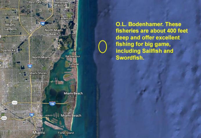 A map showing Bodenhamer Liberty Ship fishing spot in Miami