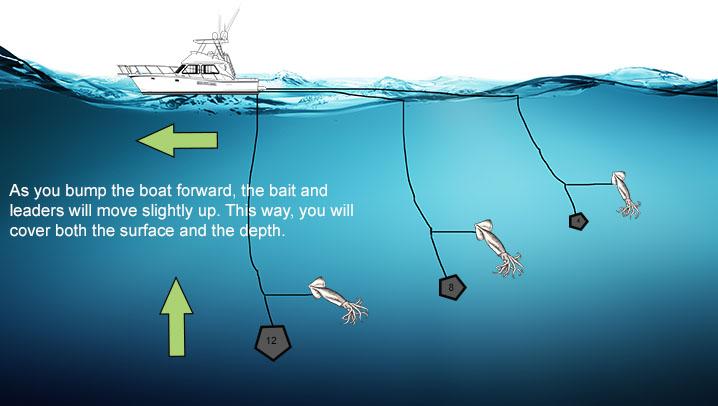 Daytime Swordfish tactic: Bump trolling