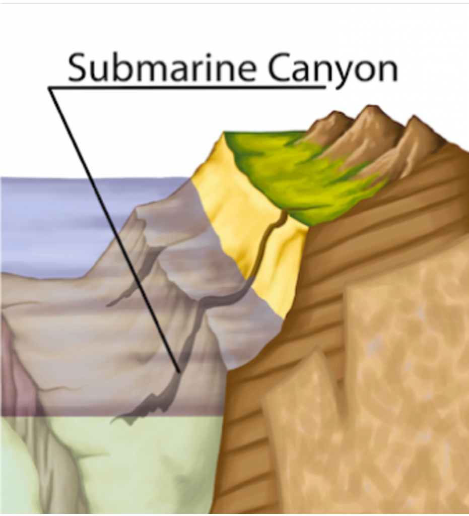 a cross section of a submarine canyon