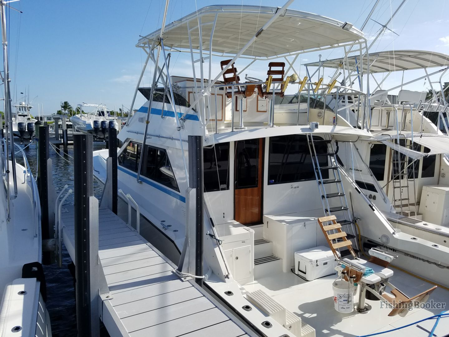 choosing a fishing charter: a boat in a marina in florida
