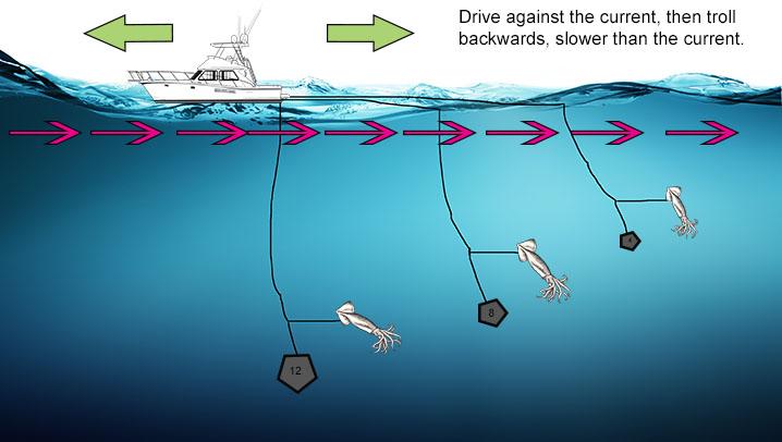 Daytime Swordfish tactic: Breakaway, or Southern Florida rig