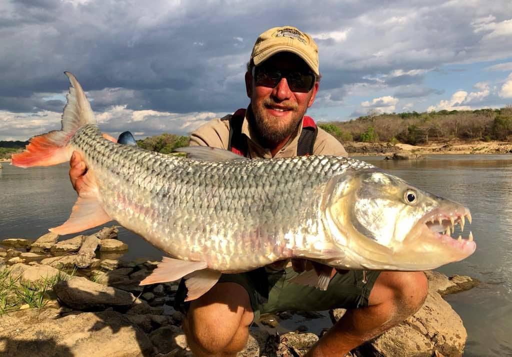 Man holding big tiger fish