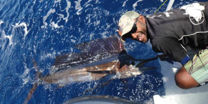 An angler in a cap and black short holds a Sailfish in the water on a fishing charter in Fiji.