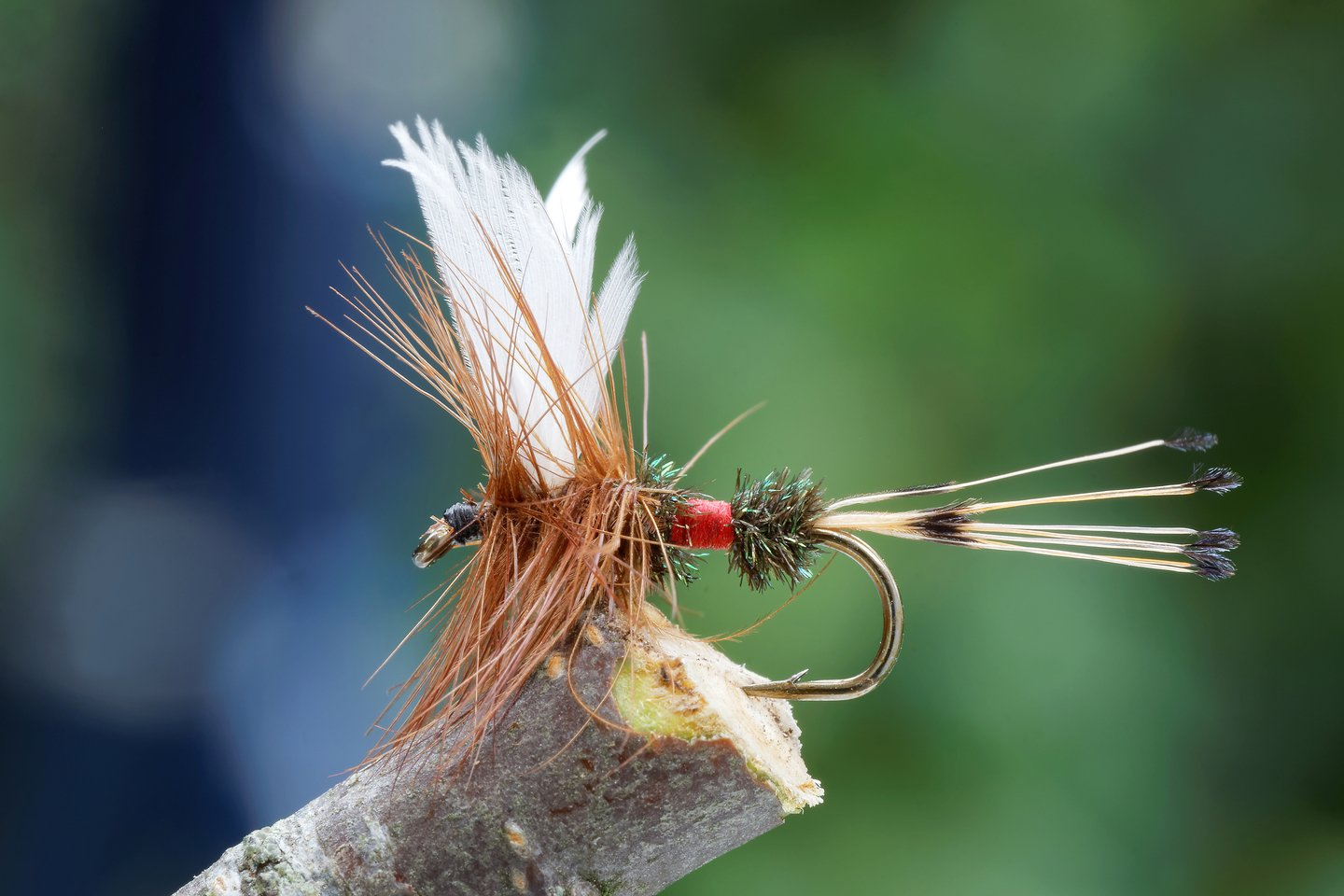 a fly fishing lure