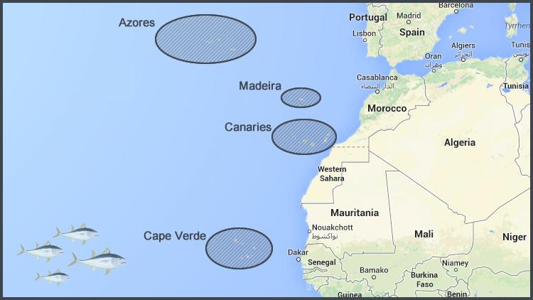Big Game ArchipelagosAzoresMadeiraCanariesCape Verde - Map portugal madeira azores