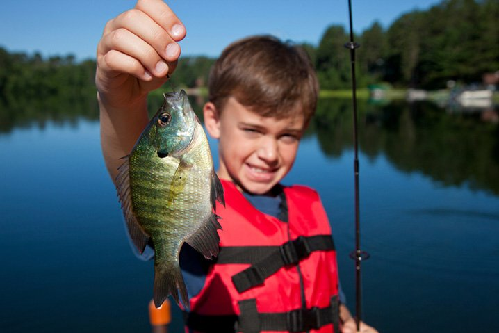 A young boy holding a Bluegill he caught on his family fishing trip on Laurel Hill Lake.