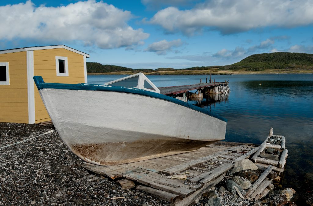 A close shot of a boat on the coast of the river