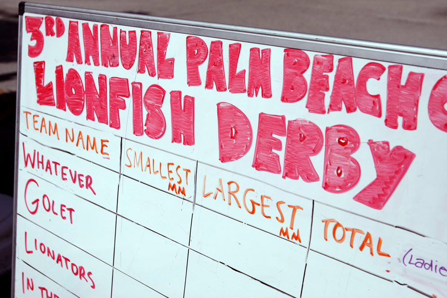 A whiteboard displaying the scores for the 3rd Annual Palm Beach Lionfish Derby